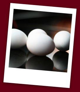 Egg Food Safety