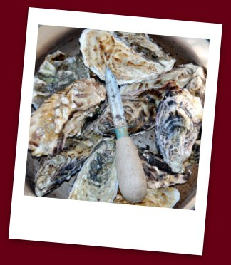 Oyster Food Safety